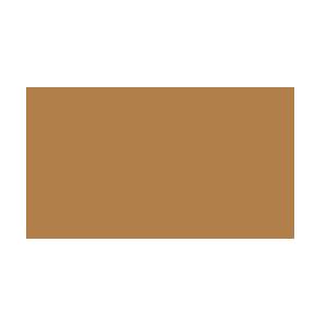 AP Films - VIDÉASTE CORPORATE, ÉVÈNEMENTS, MARIAGES | BRUXELLES